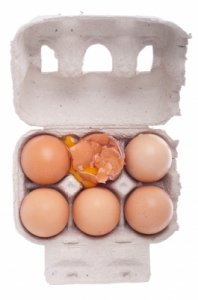 High FSH when trying to get pregnant. Improve egg quality.