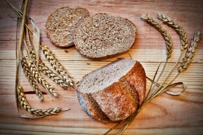 Grains became the predominant food source