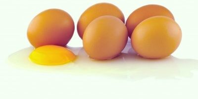 The Most Natural Way to Improve Egg Quality: It Goes Like